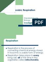 Sg Bio Ic Aerobic Respiration in Yeast