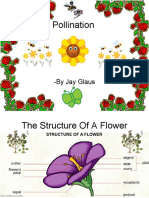 2538442 Pollination of Flowers
