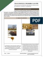 Cedula Informativa de Proyectos 2019 Apoyo Para La Alimentación de Especies Menores