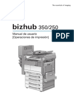 bizhub-350-250_PH2-5_um_print_es_1-1-1.pdf