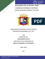 Mortalidad de Vacunos (Bos Taurus) Del Centro de Investigación Chuquibambilla 2012 – 2016