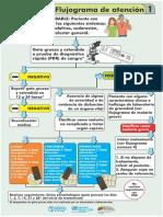 Flujograma de atencion 1.pdf