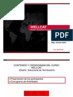 Presentacion Wellcat_R5000_1_7.pdf