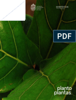 Araceli Cruz_Plantoplantas(pliego real)final_0501.pdf