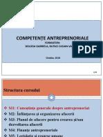 M1_Generalitati _Antreprenoriat