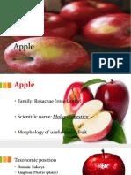 apple-170825174956_2