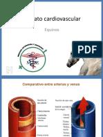 Aparato Cardiovascular Ppt