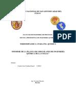 Informe de La Planta de Chocolates de Ingeniería Química de La Unsaac