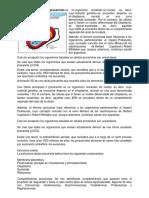celula procarita y eucariota.docx
