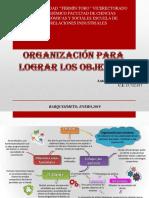 MAPA MILBER RIVERO organización para lograr los objetivos.pdf