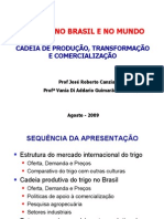 Trigo Brasil e Mundo-Jose Canziani