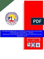 INFORME DE MERCADO ITFIP CONTADURÍA PÚBLICA - CHAPARRAL.pdf