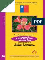 Articles- Propagacion de Plantas