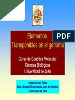 12_Epigenetica