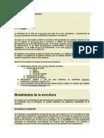 AVICULTURA EN EL MUNDO.docx