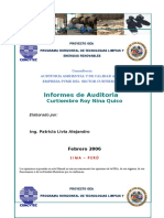 Informe Auditoria Ambiental Curtiembre Doc