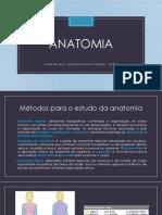 Resumo_Introdução à Anatomia