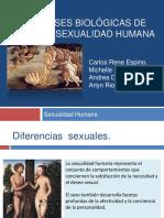 Texto Sexualidad Humana