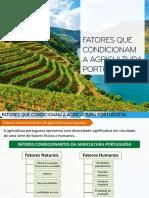 2 Fatores Condicionam Agricultura
