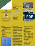 PEDO Brouchure, Energy Development