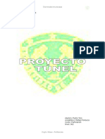 Proyecto Tunel Roger Holmberg (Giovanni Peralta)
