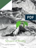 Servant of Reality Desktop 2018-11-13
