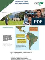 Bancos de Germoplasma de Cacao Diversidad Genética y Oportunidades.