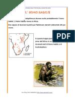 homo_habilis.pdf