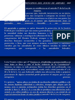 2016 Partes y Principios Del Juicio de Amparo (2) [Autoguardado]