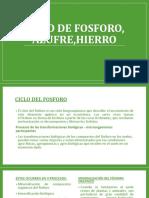 CICLO DE FOSFORO, AZUFRE,HIERRO.pptx