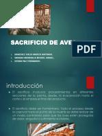 sacrificio-de-avesV7.pptx
