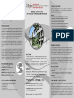 folleto diploma.pdf