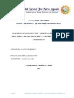 PLAN.docx Finalizadp Por Jesus Navarro