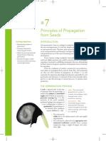 Propagación de plantas por semilla
