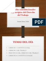 Derecho Constitucionales y Principios Del Derecho Del Trabajo