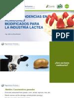 Nuevas Tendencias en Almidones Modificados Para La Industria