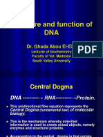 Structure and Functions of DNA