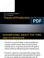 6. Theory of Production
