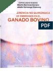 Transfer en CIA No Quirurgica de Embriones en Ganado Bovino