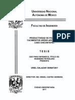 Productividad de Pozos Yacimientos Chicontepec