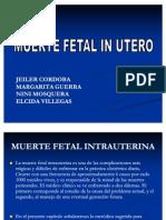 Muerte Fetal in Utero