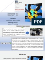 Principio Universal de los Bienes.pptx