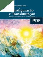 transfiguracao.pdf