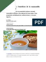 Propiedades y Beneficios de La Manzanilla Para La Salud