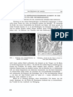 Fritz Saxl - Rinascimento dell'Antichita. Studien zu den Arbeiten Aby Warburgs
