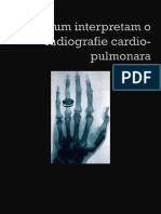 LP 1 Anatomie. Tehnica