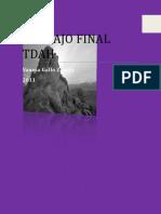 TRABAJO_FINAL Vanesa.doc