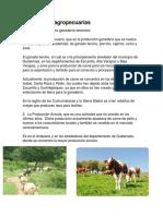 Actividades Agropecuarias, 5to Perito COMERCIO