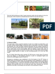 Introduction to Oil Palm & Palm Oil Milling-Introduction