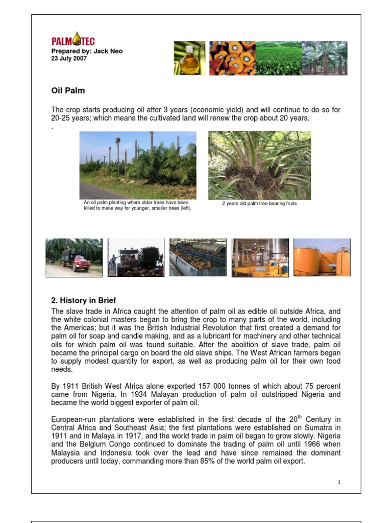 Introduction to oil palm palm oil milling introduction palm introduction to oil palm palm oil milling introduction palm oil fruit nvjuhfo Image collections